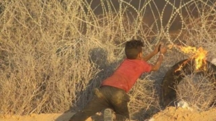 Gaza Children Trained as Terrorists